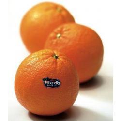 arance ribera